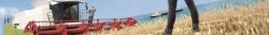 Landwirtschaftliche Erzeugnisse